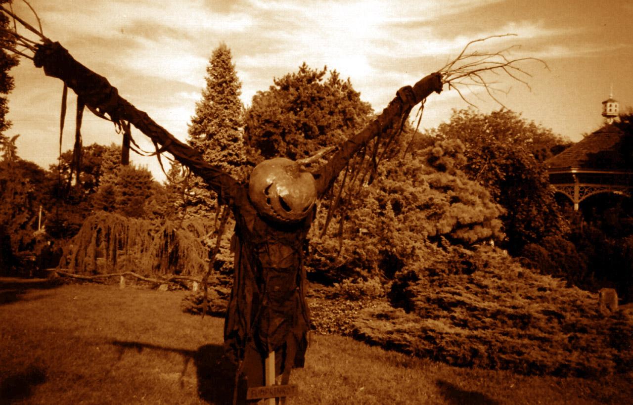 Pumpkinrot Scarecrow Pics...